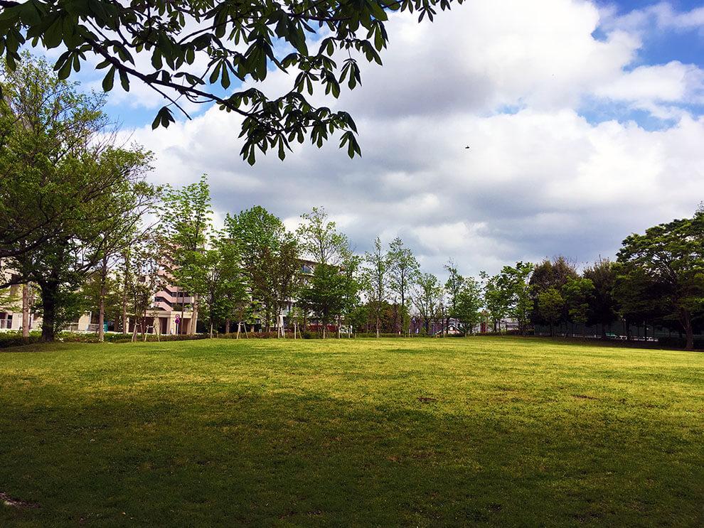 芝生ステージ1