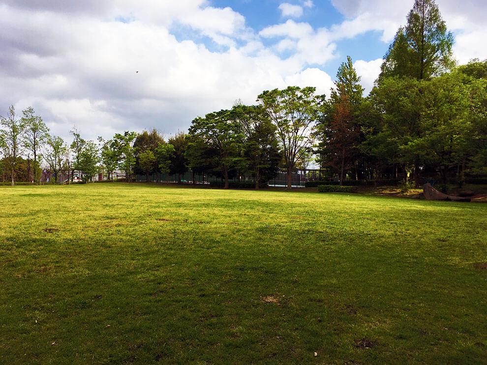 芝生ステージ2