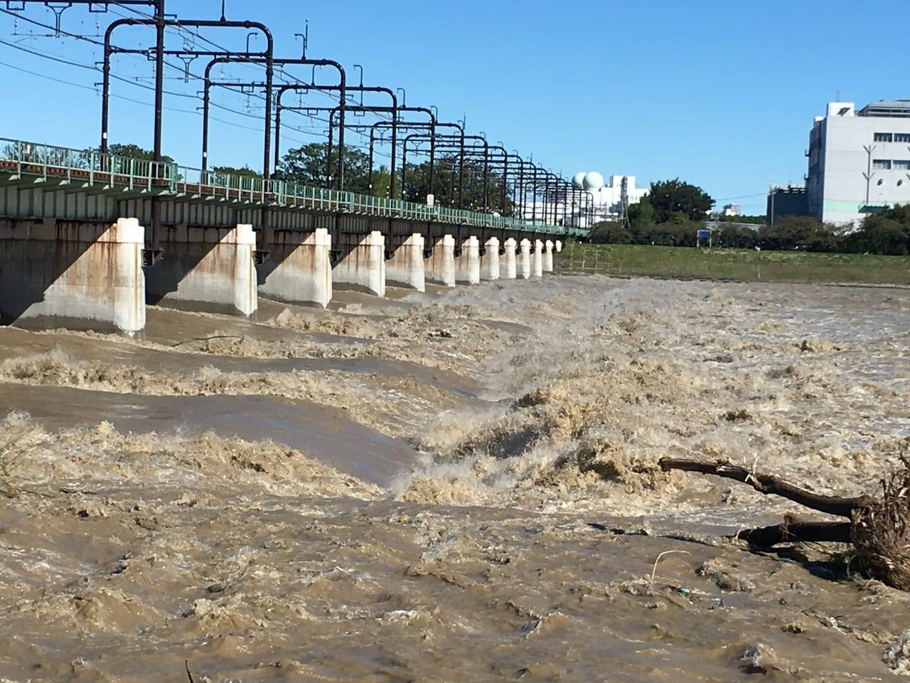 台風19号通過後の多摩川河川敷・一ノ宮公園