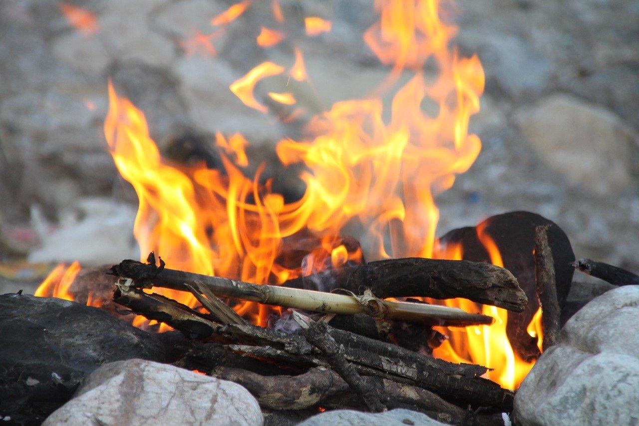 自然観察会焚き火イメージ
