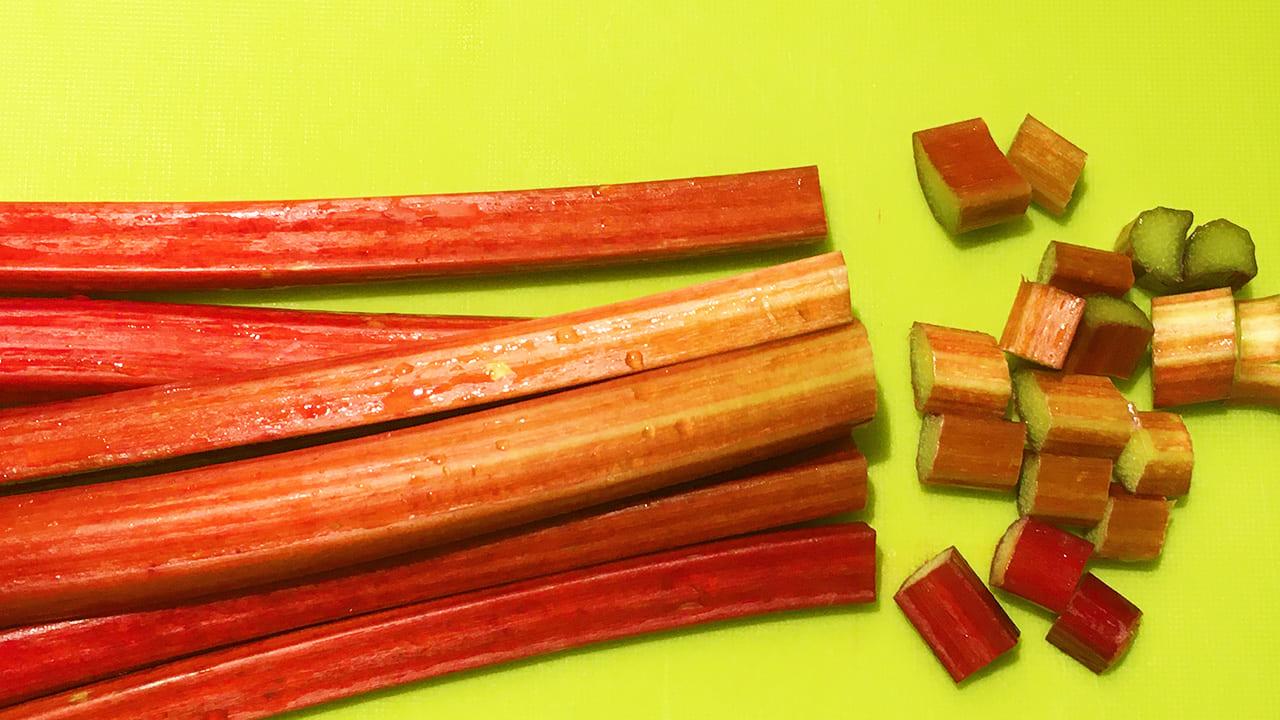 赤いルバーブって何?!多摩市の友好都市・長野県富士市からやってきた不思議な野菜