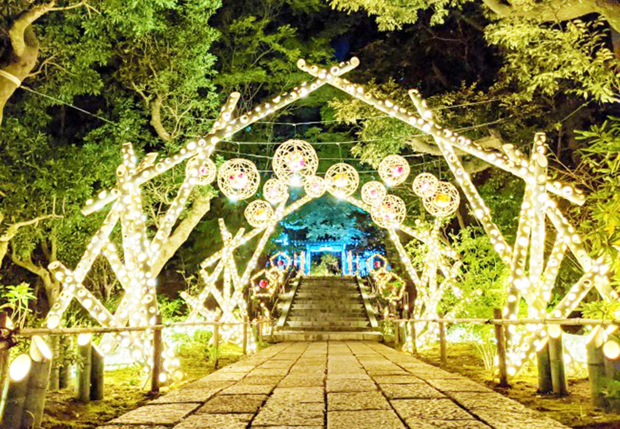 HANA・BIYORI初の冬のライティングイベント!「HANAあかり」