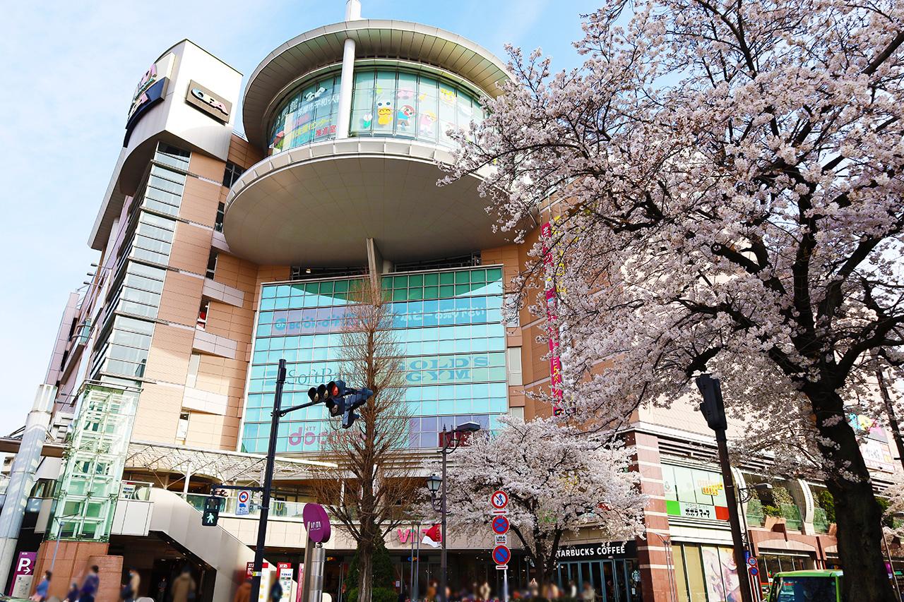 ば 耳 聖地 すませ を 『耳をすませば』の舞台となった聖蹟桜ヶ丘を巡る!【聖地巡礼マップ】
